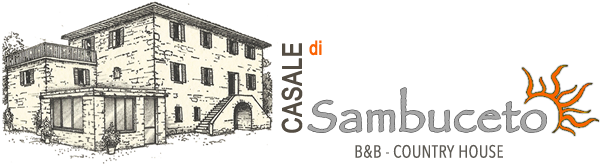 Casale Sambuceto - B&B in Valtaro - Country House